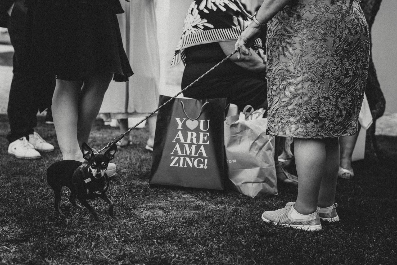 wedding photojournalism portugal