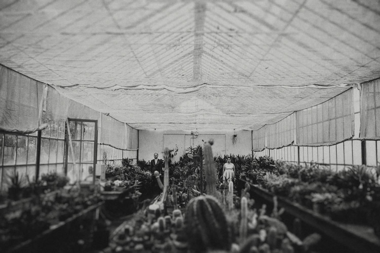 greenhouse wedding portugal estufa real
